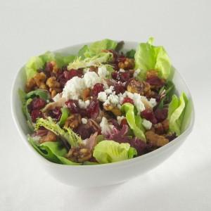Cranberry Goat Cheese Salad GJ720888